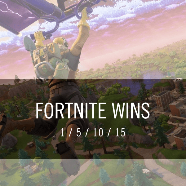 Fornite Wins